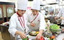 料理コンテストを通してプロを目指す学生の方々へ認知促進